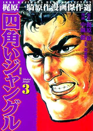 BJ004941 img main 四角いジャングル(3) Vol.2