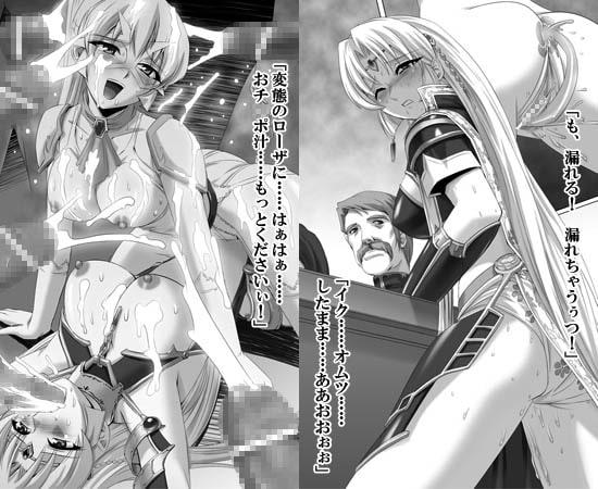 黒薔薇の騎士2 聖奴隷ローザ