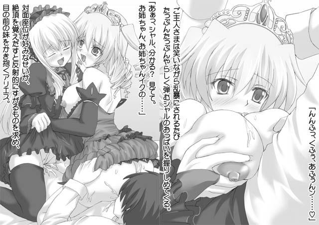 双子姫のカノン[さかき傘(作)]