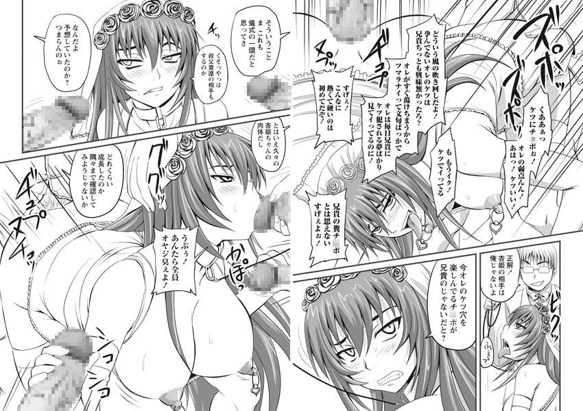 ドSな姫は汚される 応報ノ章
