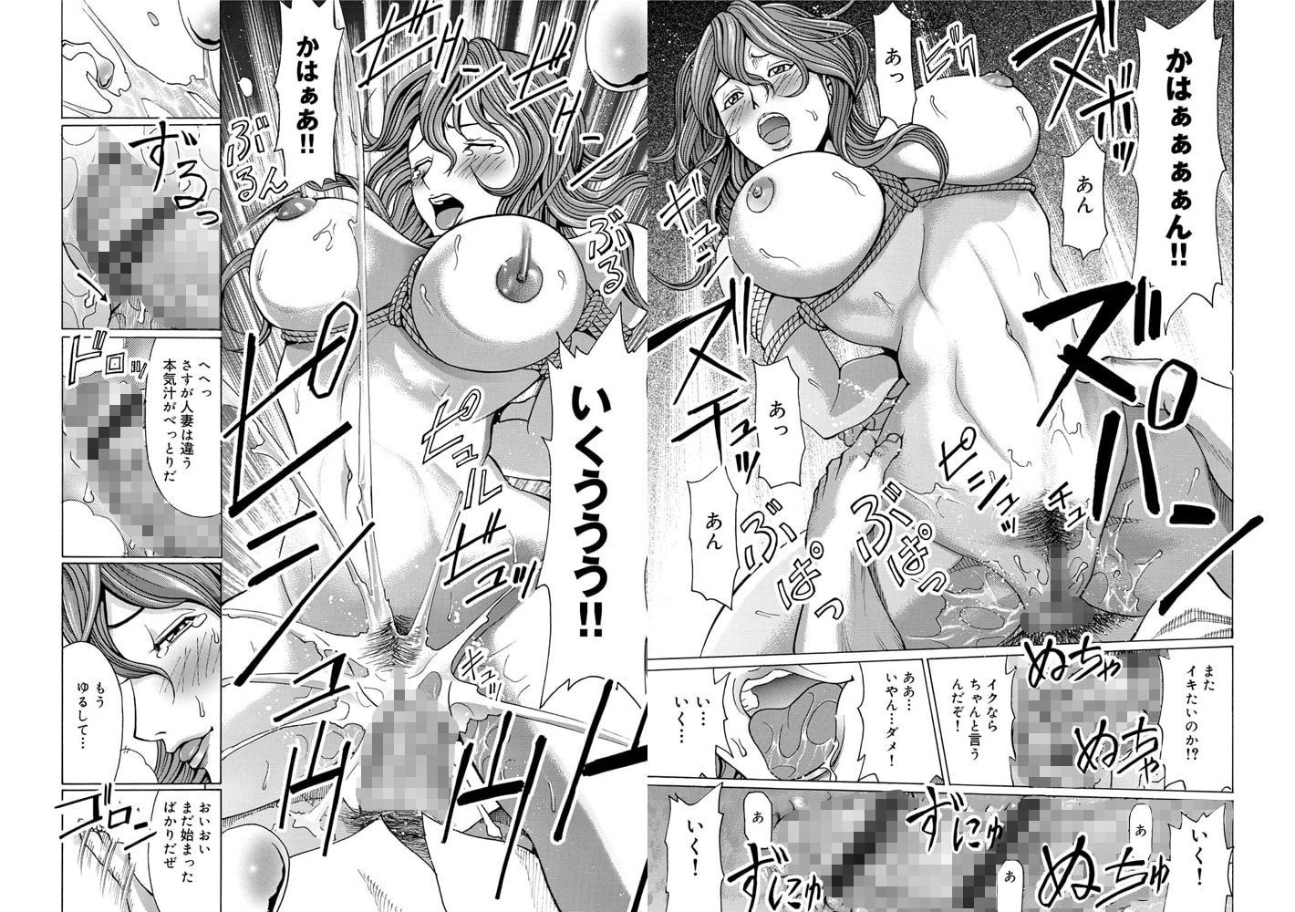 コミックマグナム Vol.41