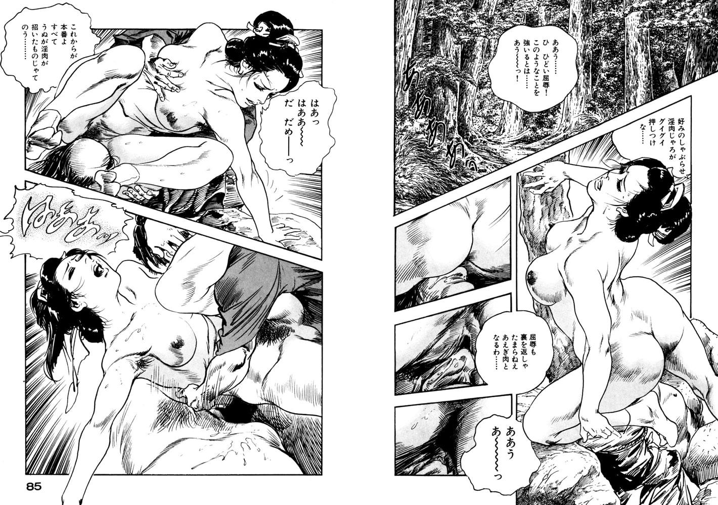時代劇シリーズ 10~夢肌淫れ~