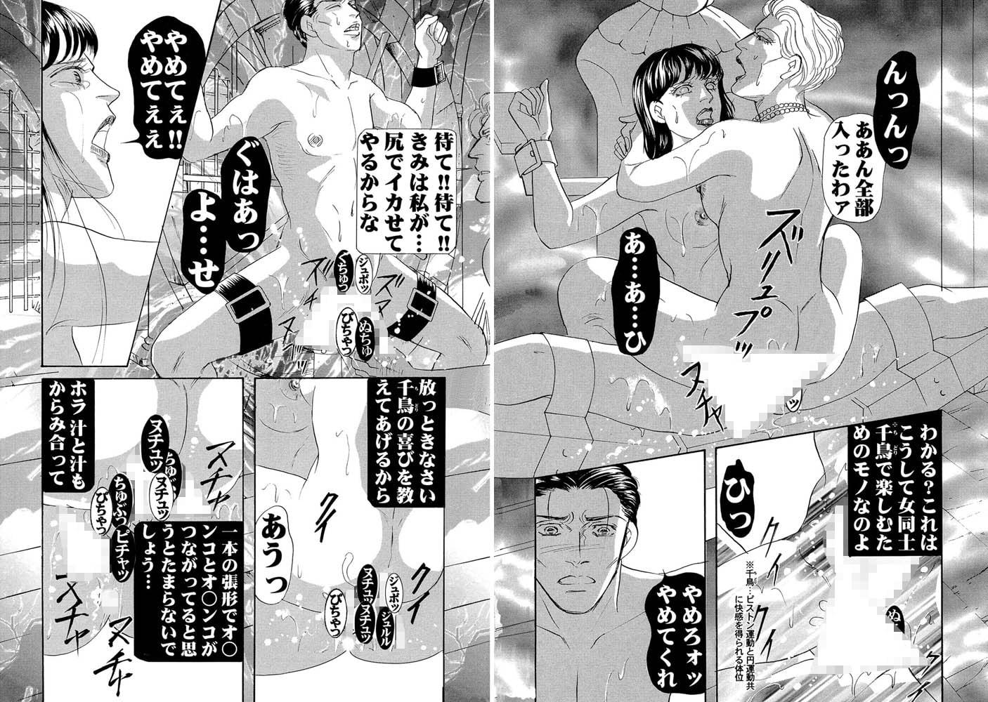 三角木馬 花嫁いじめ花弁なぶり(改訂版)11巻