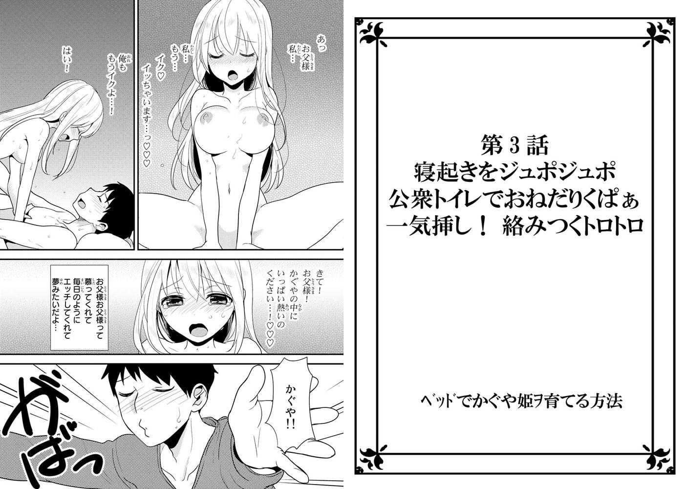 ベッドでかぐや姫ヲ育てる方法 2巻