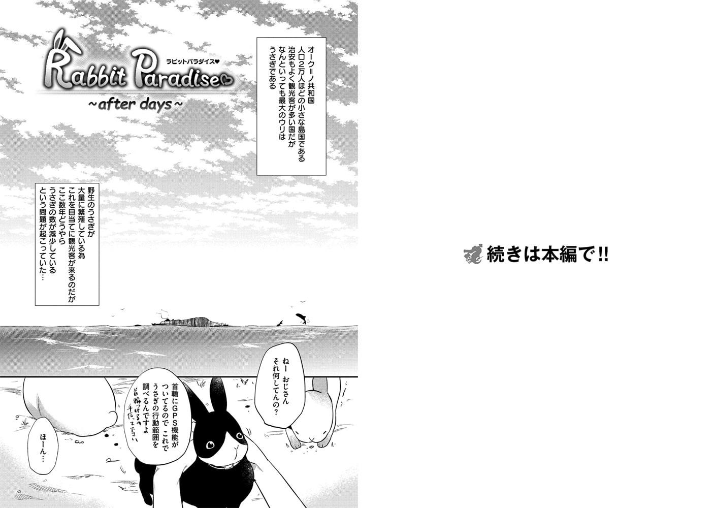 Rabbit Paradise