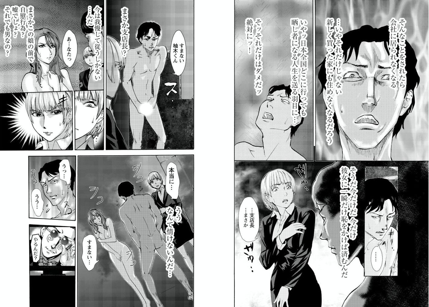 AVない若奥さまII~全裸監禁~ 2巻