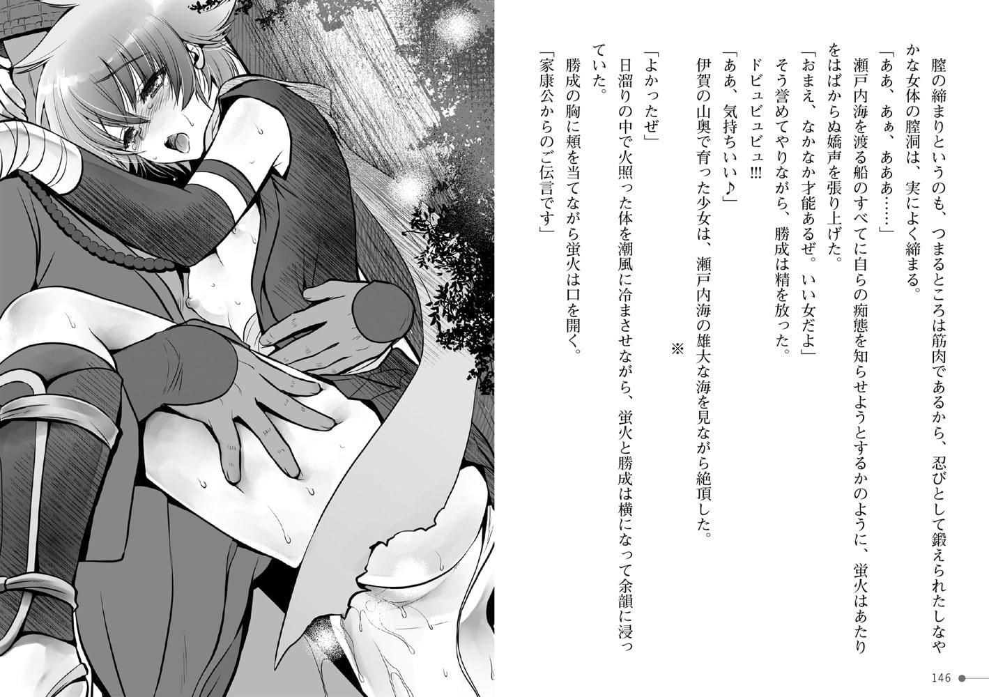 戦国艶武伝 第2巻~疾風の抄~