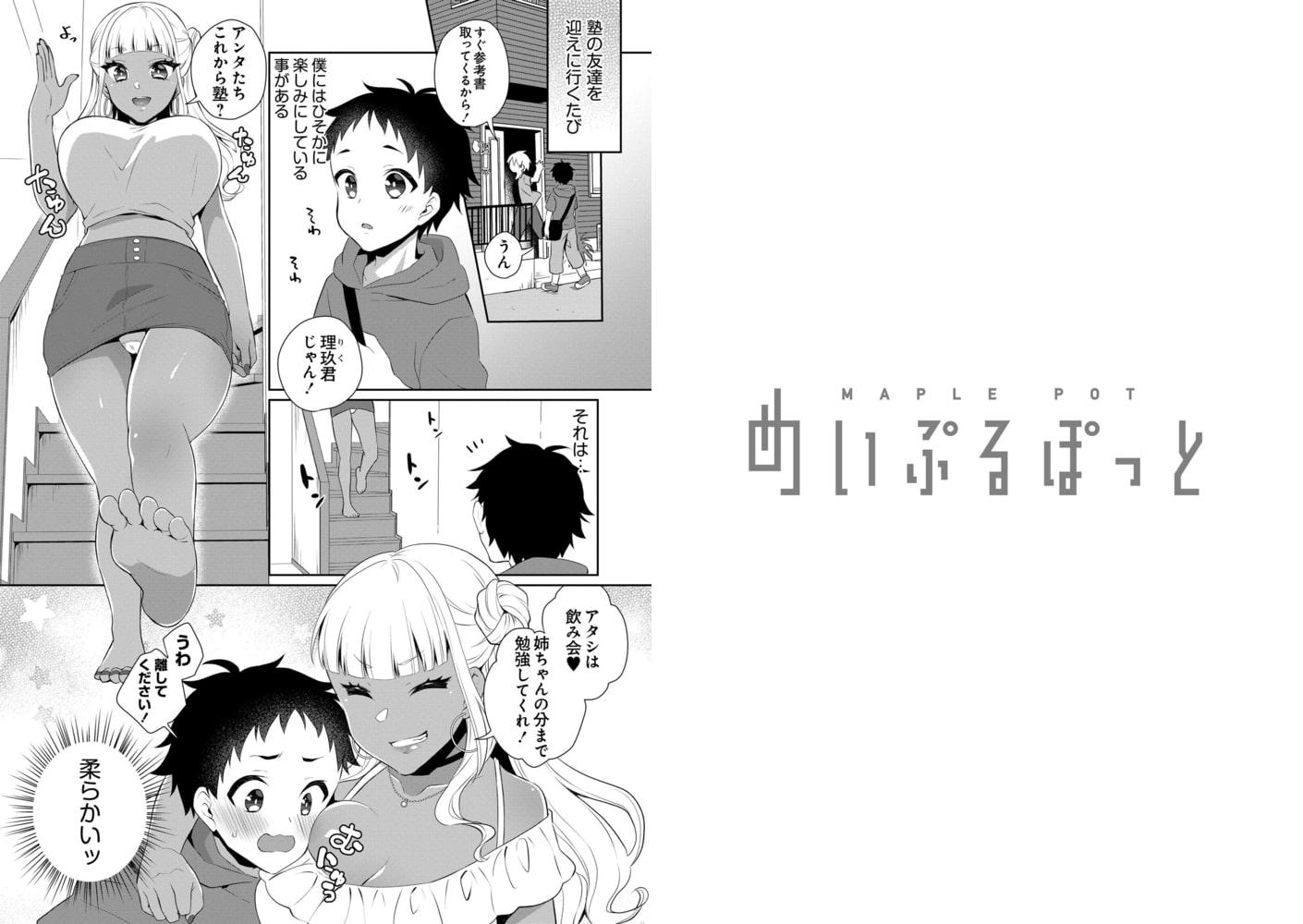 めいぷるぽっと vol.03 sweet