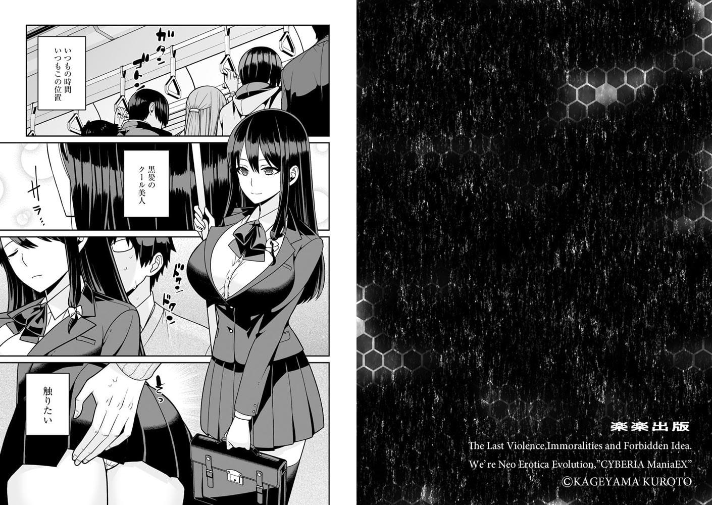 サイベリアマニアックス 痴漢凌辱パラダイス Vol.8