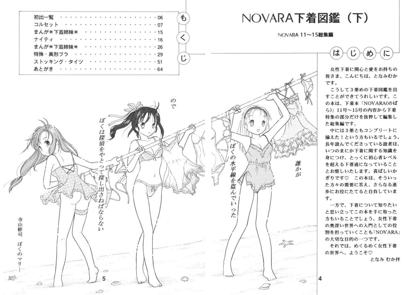 NOVARA下着図鑑(下)