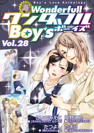 BJ249784 [20200802]新・ワンダフルBoy's Vol.28DLサイト特別版