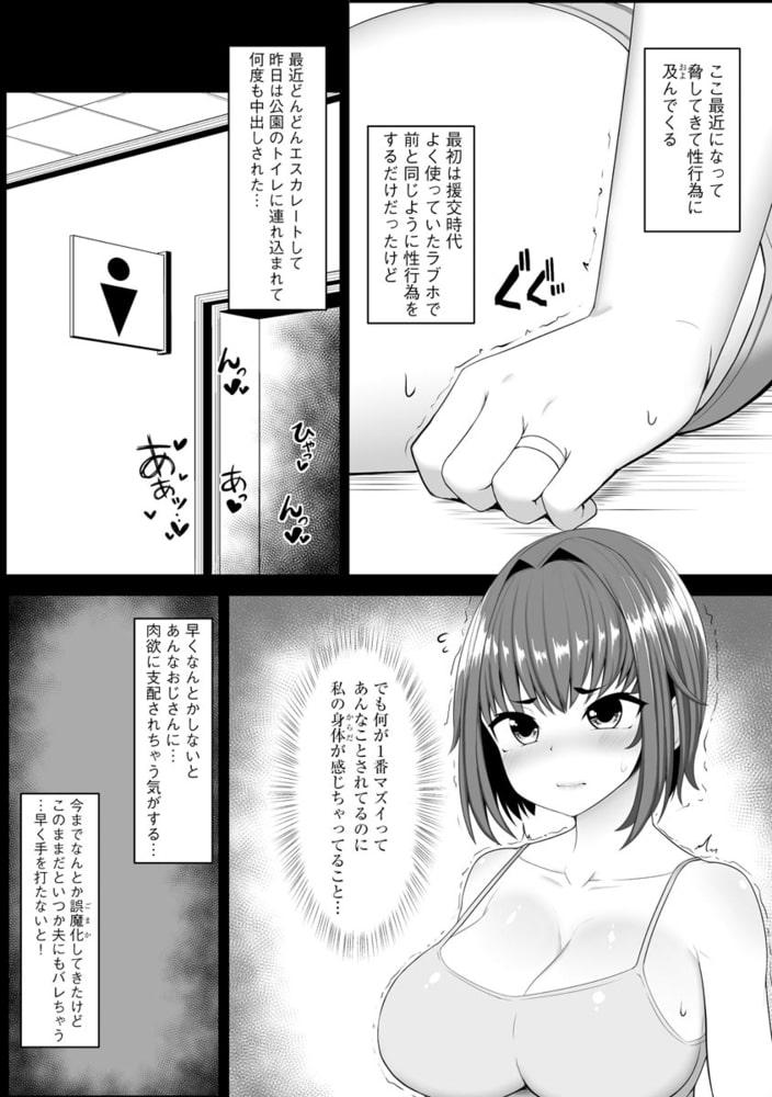 サイベリアマニアックス 人妻蹂躙コレクション Vol.9