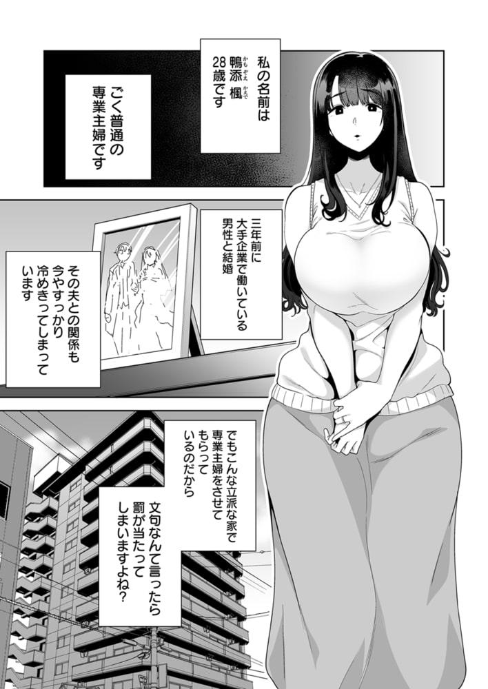 BJ284542 ワイルド式日本人妻の寝取り方 1巻 [20210402]