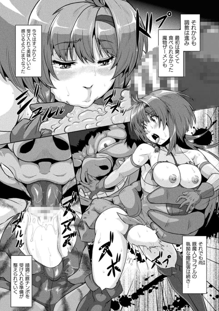 二次元コミックマガジン 縮小化ヒロイン強制オナホール計画Vol.1