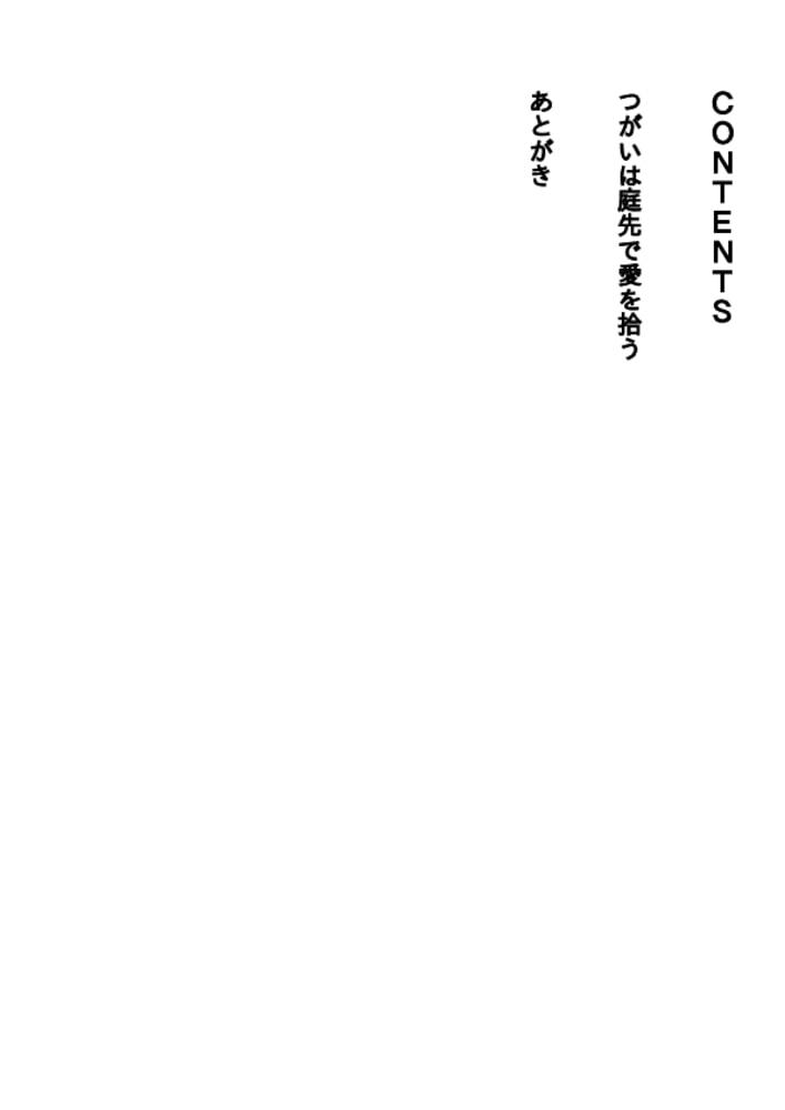 BJ289221 img smp4