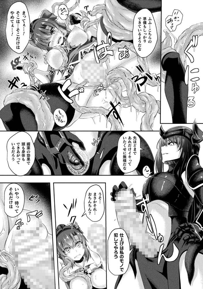 BJ292724 ~魔法拳士 触辱の刻印~ [20210501]