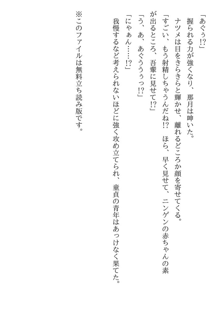 吾輩は猫である(美少女文庫)