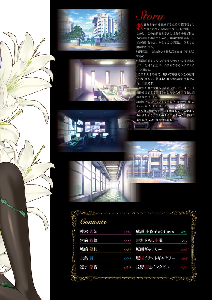 BJ322508 聖娼女ビジュアルコンプリートブック [20210906]