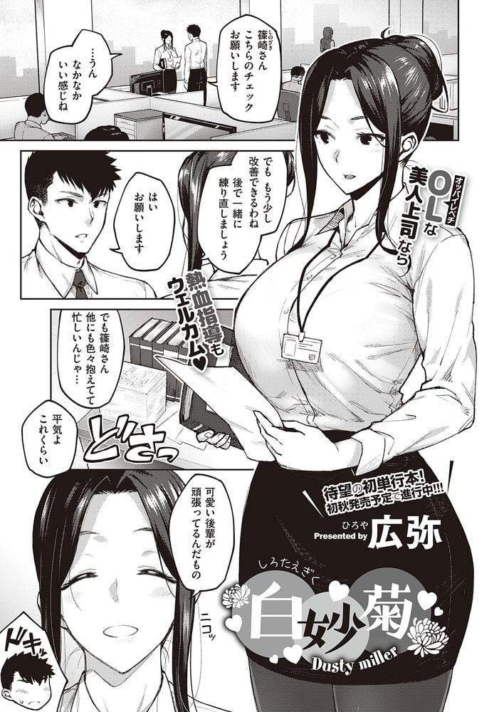 BJ326028 白妙菊 [20210920]