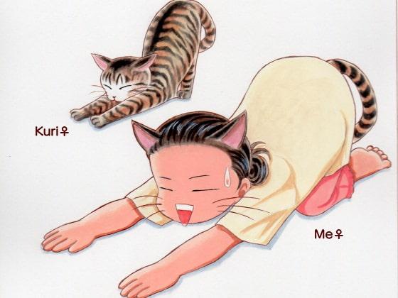 Cat's Paw Diary!