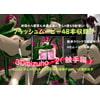 3Dmizuho-2(触手編)
