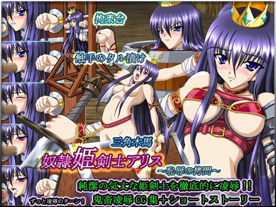 奴隷姫剣士アリス〜恥辱の拷問〜表紙