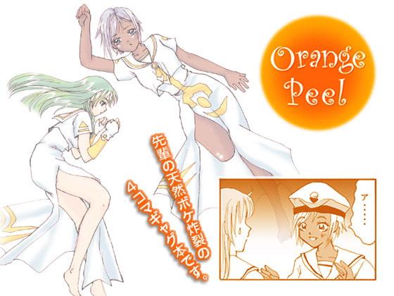 RJ038722 img main Orange Peel