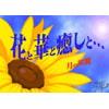 花と華と癒しと・・・ [月の双翼]