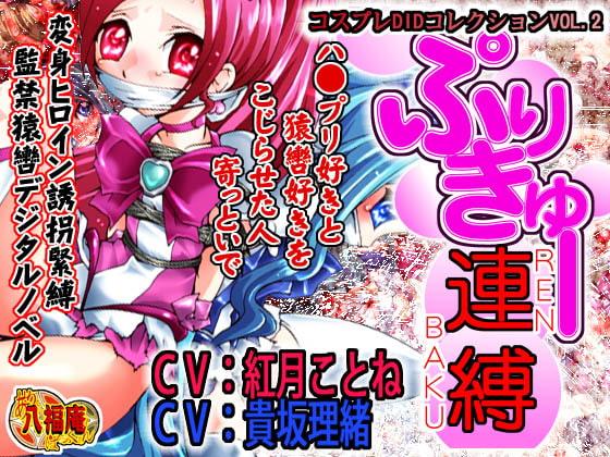 コスプレDIDコレクションVOL.2 プリきゅー連縛