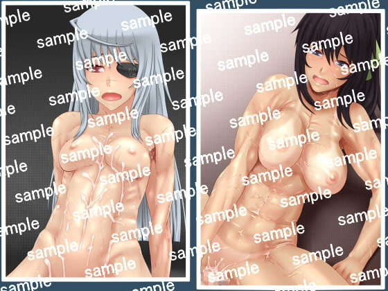 Chotto Moko Moko Inf*nite Stratos CG Collection [SECTION-11]
