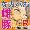 Rmanual R.B補完計画 [よみせのひよこ]