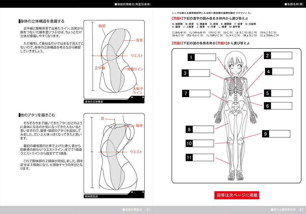 萌える美術解剖学 サンプル画像3