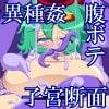 怪物園――ドラ○エ娘陵辱の宴――(D○II・III・IVCG集) [市民Lv.1]