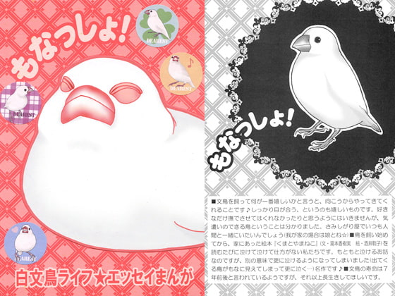 Java Sparrow! [DEAREST]