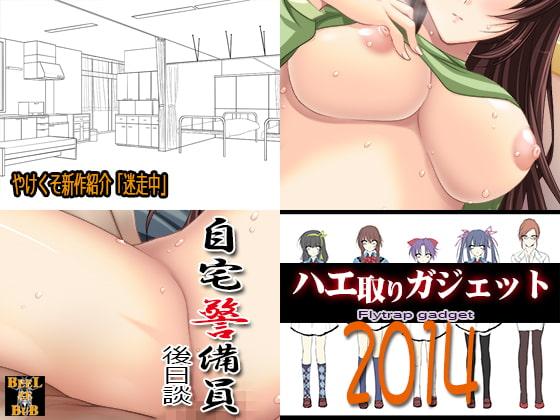 ハエ取りガジェット2014