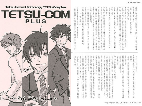 TETSU-COM PLUS [COOL FOOL]