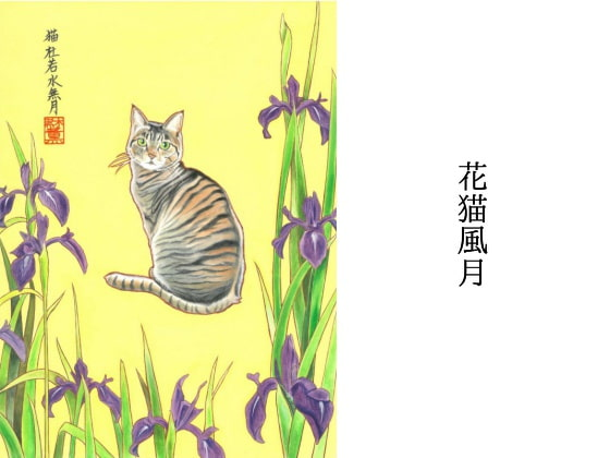 A Cat And Flowers In June [Nekojarashi no Yado]