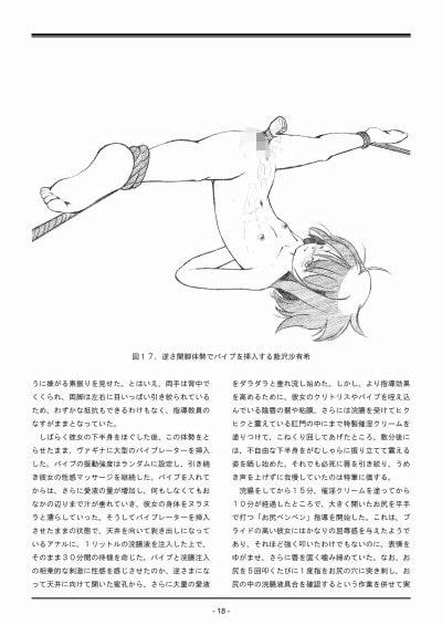 DLsite専売聖女学園外伝~高き誇り Report Appendix~