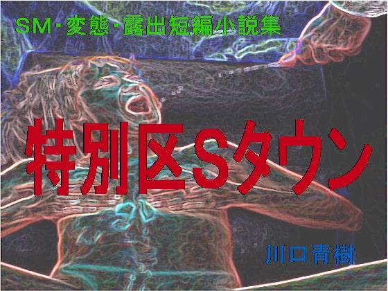SM・変態・露出短編小説集「特別区Sタウン」