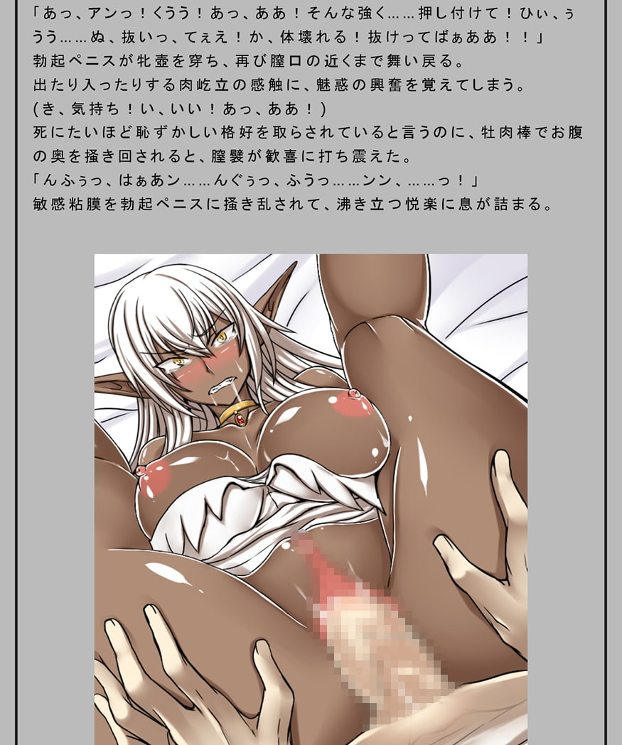 聖騎士の敗北~牝肉乃檻~