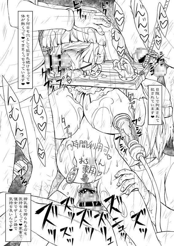 姫・淫女快楽モルモット