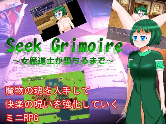 Seek Grimoire~女魔道士が堕ちるまで~