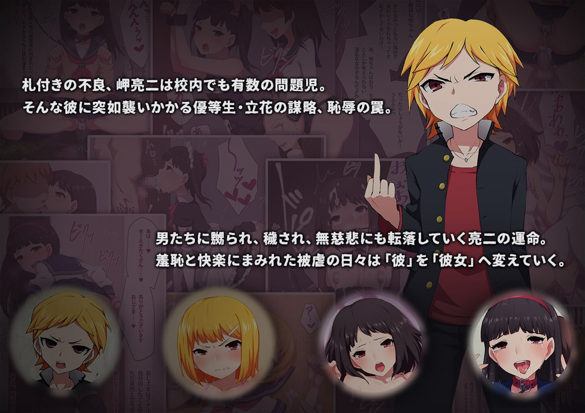 不良少年の躾け方 〜変態女装マゾへのメス堕ち調教録〜