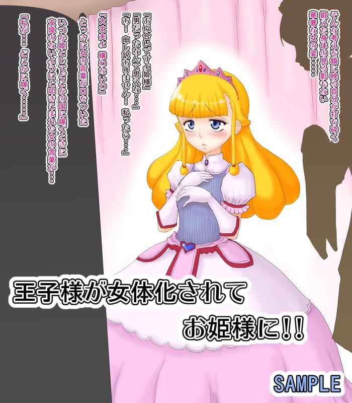 陵辱女体化姫 王子様がお姫様になって庶民ち○ぽに屈服させられるCG集