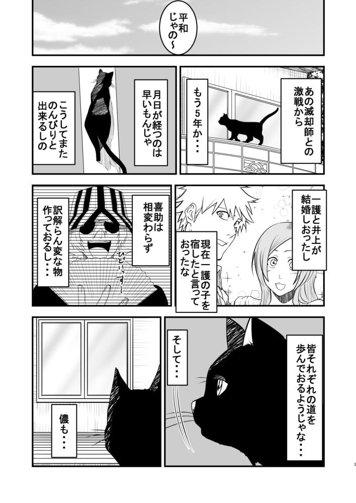 黒猫の戯れ