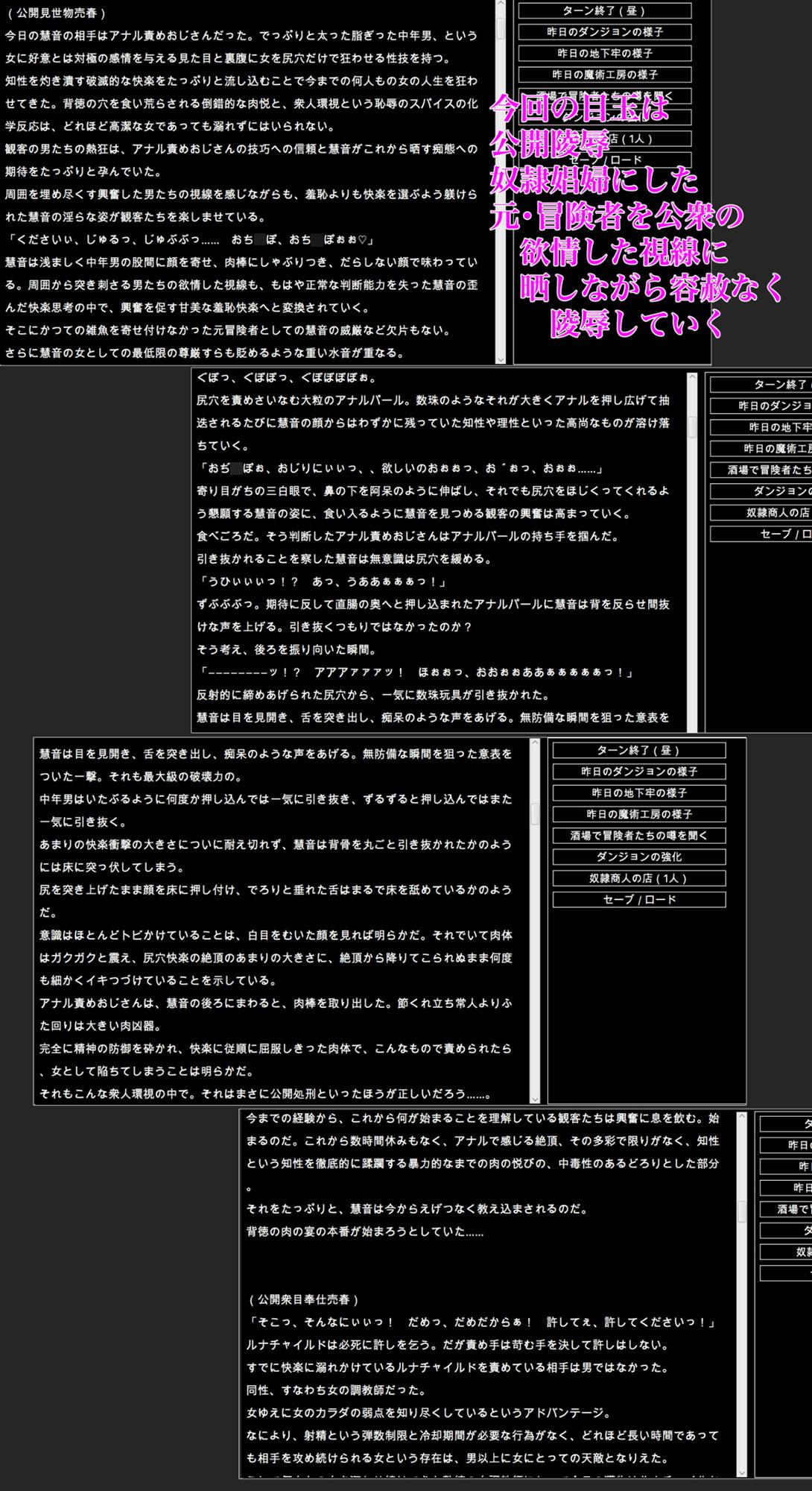 幻想エロトラップダンジョン敗北陵辱冒険記 外伝 奴隷娼婦調教録