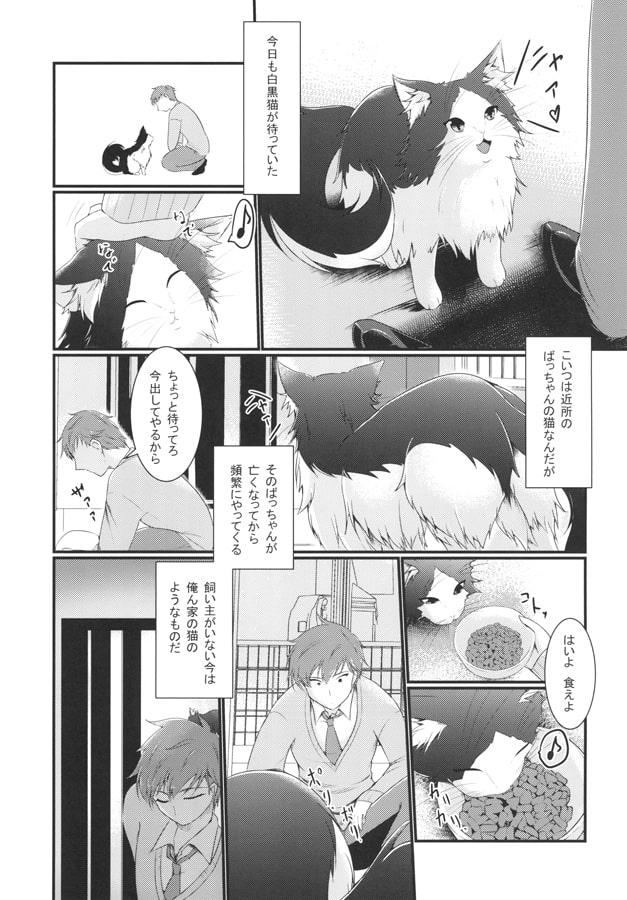 化け猫っくす ~契約の契り~