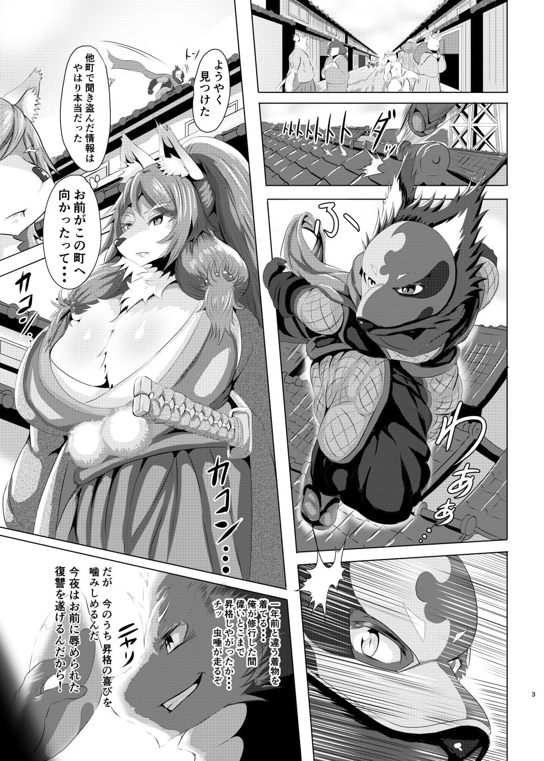 侍女と忍者