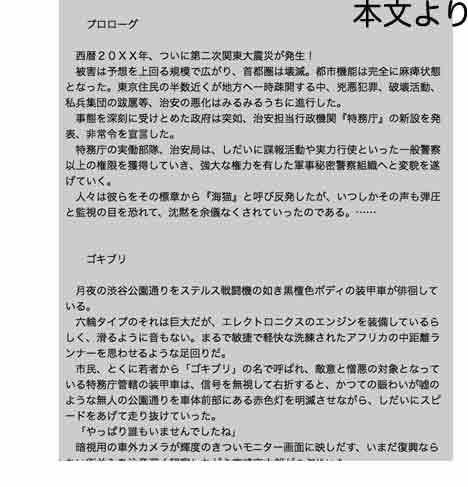 secret police 海猫03