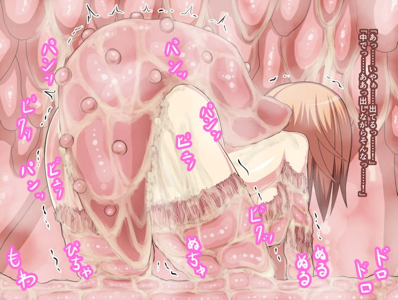 【CG集】おっぱいと肉壁
